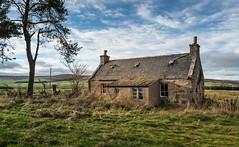 Wallpaper Cottage - abandoned in the Highlands