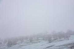 Distant hillside in snowfall (Raoul Pop) Tags: winter somewhere transilvania romania ro