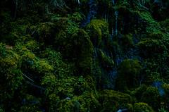 DSC_0608 (Alrom Photography) Tags: ireland nature nationalpark mahon mahonfalls irish luckoftheirish eire irishnature landscape landscapephotography mountain water waterfall