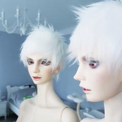 Pure morning (Lorena Firefly) Tags: bjd doll demon balljointeddoll dollfie bjdvampire vampire switch switchsoseo switchbjd albinobjd albino