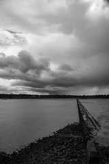 Lauriston and Crammond with Alastair April 2018 (110 of 126) (Philip Gillespie) Tags: crammond lauriston castle keep gardens park green blue red yellow orange colour color mono monochrome black white sea seascape landscape sky clouds drama dramatic walkway path flowers leaves trees april spring defences canon 5dsr people rust metal grafitti man dog petals bluebells dafodils holly blossom pond forth water wet rain sun reflections architecture mirrors gold japan garden sunlight scotland