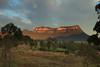 Mount Gundangaroo Morning (Darren Schiller) Tags: glendavis mountgundangaroo capertee bluemountains australia clouds morning dawn sunrise landscape newsouthwales nature sandstone trees