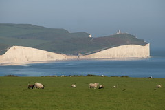 Seven Sisters, Birling Gap (timothyhart) Tags: seaford head southcoast englishchannel sevensisters coastalwalk sunny spring 2018 england uk sea hot walking outdoors