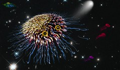 Spacial Amoeba (Rusty Russ) Tags: amoeba space comet jelly fish alien ship eyes colorful day digital window flickr country bright happy colour eos scenic america world sunset beach water sky red nature blue white tree green art light sun cloud park landscape summer city yellow people old new photoshop google bing yahoo stumbleupon getty national geographic creative composite manipulation hue pinterest blog twitter comons wiki pixel artistic topaz filter on1 sunshine image reddit tinder