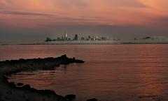 SF Skyline (shishirmishra1) Tags: water waterfront sausalitto sanfrancisco california usa sunset sunrise sun sky skyline building light beautiful beach city cityscape