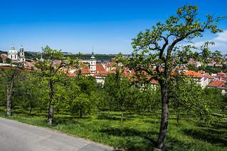 Spring Sunday at Petřín, Praha