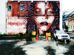 A Quest for Street Art (Steve Taylor (Photography)) Tags: rone worcesterst christchurch mural art digitalart graffiti streetart sign portrait cone roadcone trafficcone brown yellow orange red blue black gravel carpark water puddle wooden newzealand nz southisland canterbury city cbd fern leaf wet car rain face lady woman