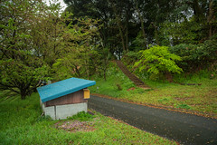 Shed and stairs. (Yasuyuki Oomagari) Tags: 小屋 shed green rainy stairs blue road shrine nikon d850 zeiss distagont2821 landscape tree woods japan kyushu fukuoka 日本 九州 福岡 階段 神社