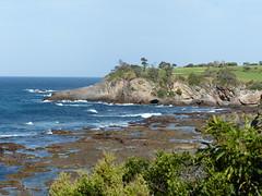 Coast (teressa92) Tags: rocks water sky waves ocean leaves trees eastcoast sea coastline cave blue green