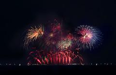 吉貝島 澎湖 煙火 (Roy- HZ Visual Studio) Tags: firework fireworks rainbow rainbowbridge taiwan penghu fireworksfestival fireworkfestival magong guanyinting magongguanyintingrecreationarea longexposure gaillardiaisland newyear newyearconcept happynewyear skyfirework skyfireworks huxi jibei waian xiyu baisha sevenbeauties qimei nanhuport longmen vigor energy blooming bloom beautiful travel trip nightscene 煙火 花火節 澎湖 花火 煙花 觀音亭 彩虹 彩虹橋 台灣 臺灣 臺灣澎湖 台灣澎湖 澎湖花火節 馬公 菊島