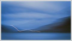 Homeward Bound (adam_pierz) Tags: icm faroeislands blue evening clouds sky streymnes streymoy olympusomd micro43 microfourthirds sea water fjord mountains