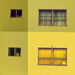 a house divided (msdonnalee) Tags: window ventana janela fenster finestra yellow jaune gelb giallo amarillo colorfx curtain cortina