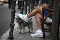 El Rastro, Madrid (N.D.K.K.) Tags: street strada spain strase size stranger film format focus full frame photography people photo raw rastro nike urban usm europe eu europa dekoramadrid pintura