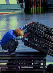 net (jezselten) Tags: child boy city fishing net nets pots catch urban sea ocean fish work working kid fremantle perth wa westernaustralia australia port fishandchips jetty ramp wharf harbour