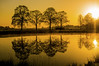 Mirror at Sunrise (metsemakers) Tags: mist tree sunrise water heythuysen middenlimburg thenetherlands sony nex mirror reflectie reflections