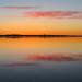 Spring Reflections - Réflections du printemps