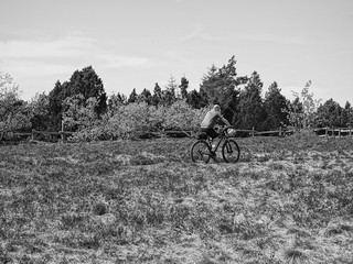 cyclist in the northern Black Forest