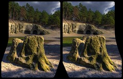 That mysterious depression in the woods 3-D (Stereotron) Tags: sachsenanhalt saxonyanhalt ostfalen harz mountains gebirge ostfalia hardt hart hercynia harzgau blankenburg burgregenstein sandhöhlen sand cave forest woods outback backcountry wilderness prehistoric prähistorisch crosseye crossview xview pair freeview sidebyside sbs kreuzblick 3d 3dphoto 3dstereo 3rddimension spatial stereo stereo3d stereophoto stereophotography stereoscopic stereoscopy stereotron threedimensional stereoview stereophotomaker stereophotograph 3dpicture 3dimage canon eos 550d chacha singlelens kitlens 1855mm tonemapping hdr hdri raw
