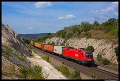 ÖBB 1116 256, Szár 18-08-2017 (Henk Zwoferink) Tags: szárliget komáromesztergom hongarije hu szár henk zwoferink öbb siemens taurus 1116 256 rail cargo hungaria