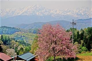 The Beautiful Village