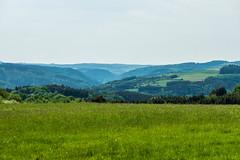 AhrSteig 4 (rbrands) Tags: wanderung arhtal eifel wanderer hönningen rheinlandpfalz deutschland de