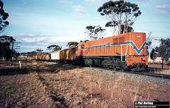 3456 DB1583 southbound goods near Wagin 16 February 1983 (RailWA) Tags: railwa philmelling westrail 1983 db1583 southbound goods near wagin