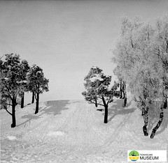 tm_7084 - Skidbacke (Tidaholms Museum) Tags: svartvit positiv vinter snö slalombacke