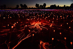 Field of Light - near Uluru (Ayer's Rock), Australia (Harald Philipp) Tags: uluru night dusk sunset lights led fieldoflight brucemunro ayersrock