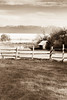 Visions of Yesteryear (O.S. Fisher) Tags: antelopeisland fieldinggarrranch greatsaltlake utah wasatchmountains clouds farm fence island landscape monotone oldtime pole ranch rural sepia shed wooden yesteryear