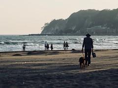 sunset beach (osanpo_traveller) Tags: japan beach kamakura shonan olympus penf jupiter jupiter9 sunset 85mm 85mmf2