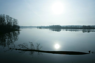 Cold Spring Morning-1