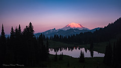 Sunrise at Tipsoo (SeattleEmpress--on and off for a bit) Tags: mtrainier mrnp mtrainiernationalpark nationalpark