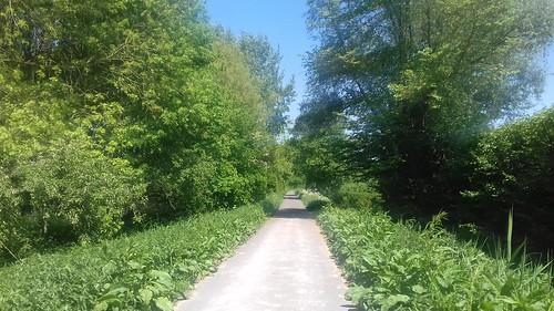 Zondagsweg bij 's-Gravenpolder