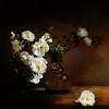 Roses (BirgittaSjostedt) Tags: roses pot still stilllife garden flower texture