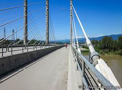 Convergence (R. Sawdon Photography) Tags: pittriverbridge pocotrail leadinglines bridge bikerider cables pavement sidewalk path crossing metrovancouver may518 sky blue grey towers lougheedhighway