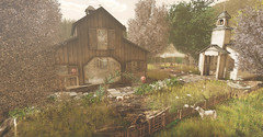 The Venue (kellytopaz) Tags: wedding venue ionic chapter four church barn reception anniversary horse landscape dog