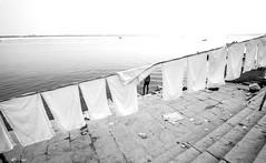 Dhobi Ghat (Harshal Orawala) Tags: varanasi clothes washing white bnw streetphotography street gath dhobi