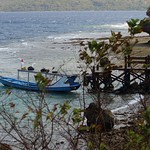 Menjangan Island Harbour, Bali thumbnail
