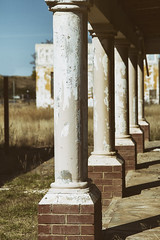 Old columns (Wildeye Photography) Tags: nature oldbuildings