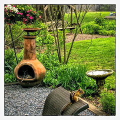 Chipper Enjoying the Day (Timothy Valentine) Tags: home birdbath outback 0518 swing chimenea flowers 2018 eastbridgewater massachusetts unitedstates us chipmunk