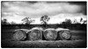 Hey! Here are some Hay Bales (Anne Worner) Tags: blackandwhite lensbaby bw bend blur landscape manualfocus manualfocuslens mono selectivefocus