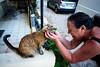 thrivers on islands #123 (Cat Village, St. Julians, Malta) (Marser) Tags: xt10 fuji raw lightroom malta stjulians cat woman マルタ セントジュリアンズ 猫 貓