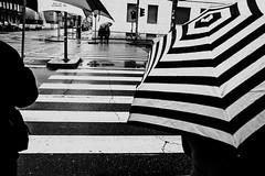Lines (Alessandro Luigi Rocchi) Tags: verde