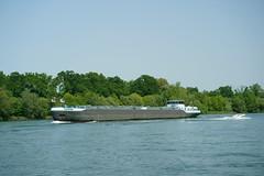 TMS GANDA (Lutz Blohm) Tags: tmsganda tankschiff rhein rheinschifffahrt gütermotorschiff mannheim binnenschifffahrt binnenschiffe fluskilometer418 fe70300goss sonyalpha7aii
