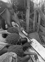 Baliem-vingerkootjes afhakken-083 (Stichting Papua Erfgoed) Tags: baliem lijkverbranding rouw papua nieuwguinea nederlandsnieuwguinea irianjaya stichtingpapuaerfgoed papuaheritagefoundation westirian irianbarat pace newguinea