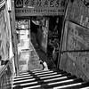 morning light (Le Xuan-Cung) Tags: morninglight earlymorningatchinatown toronto canada streetphotography sw bw nb bigcity streetshots streetlife dog blackandwhite noiretblanc