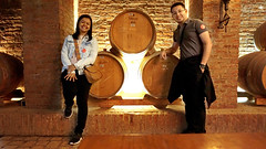 Visita à adega da vinícola Undurraga - Chile (Tiago Nomack) Tags: chile férias osorno puerto varas frutillar cajon del maipo andes cordilheiras