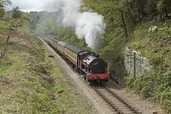'Victor' approaching Newby Bridge 12/05/2018 (TomNoble7) Tags: bagnall victor lakeside haverthwaite railway newby bridge steam train