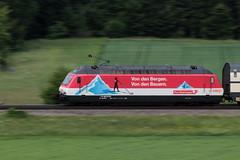 SBB Lokomotive Re 460 065 - 6 mit Taufname Rotsee mit Werbung COOP mit Intercity IC Zug 977 B.asel SBB - I.nterlaken O.st ( 369 m - 636 t ) unterwegs zwischen Gümligen und Rubigen im Kanton Bern der Schweiz (chrchr_75) Tags: christoph hurni schweiz suisse switzerland svizzera suissa swiss chrchr chrchr75 chrigu chriguhurni chriguhurnibluemailch albumzzz201805mai mai 2018 sbb cff ffs werbelokomotive re 460 lokomotive bahn train treno zug albumbahnsbbre460werbelokomotiven werbung re460 albumsbbre460 schweizerische bundesbahn bundesbahnen lok elektrolokomotive triebfahrzeug slm albumbahnenderschweiz juna zoug trainen tog tren поезд паровоз locomotora lokomotiv locomotief locomotiva locomotive eisenbahn railway rautatie chemin de fer ferrovia 鉄道 spoorweg железнодорожный centralstation ferroviaria