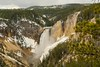 The look of spring (ChicagoBob46) Tags: lowerfalls yellowstone yellowstonenationalpark nature landscape coth coth5 ngc